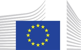 EU sets working groups and launches