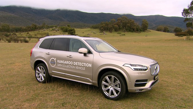 Volvo_Kangaroo_Detection_ADAS_Australia