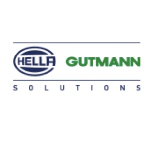 Hella Gutmann solution- all round vision tool