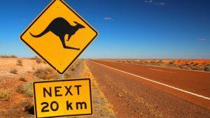 Volvo-kangaroo-t'wire